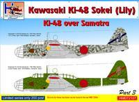 Kawasaki Ki-48 over Sumatra part 3