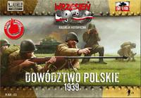 Polské protitankové družstvo