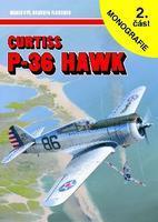 P-36 Hawk 2.díl
