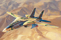 """Persian Cat"" F-14A TomCat - IRIAF"