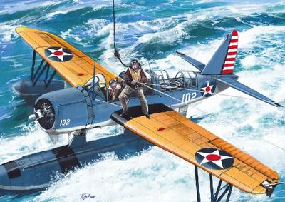 Kingfisher US Navy
