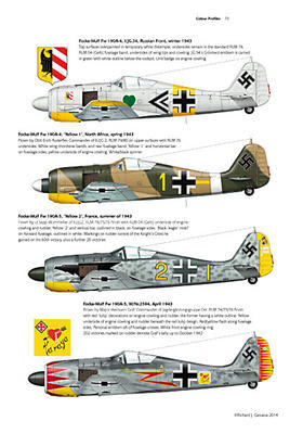 FW 190 Radial engine - 2