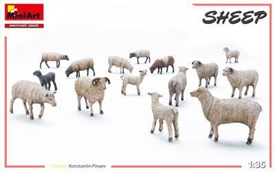 Sheep - 2