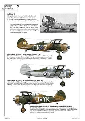 The Gloster Gladiator - 2
