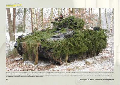Camouflage-Markings-Soldiers Grantiger Lowe - 2