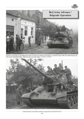 German Panzers and Allied Armour in Yugoslavia in WWII - 3