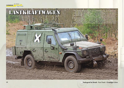 Camouflage-Markings-Soldiers Grantiger Lowe - 3