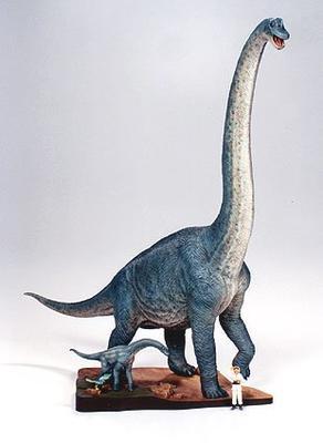 Brachiosaurus Diorama Set - 3