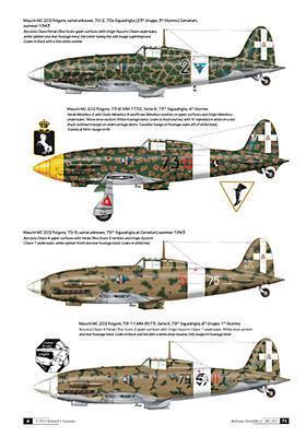 The Macchi MC.202 Folgore - 4