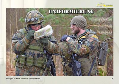 Camouflage-Markings-Soldiers Grantiger Lowe - 4
