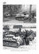 German Panzers and Allied Armour in Yugoslavia in WWII - 5/5